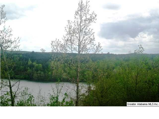 30 STILLWATER RD Unit 1 Double Springs, AL 35553 - MLS #: 629177