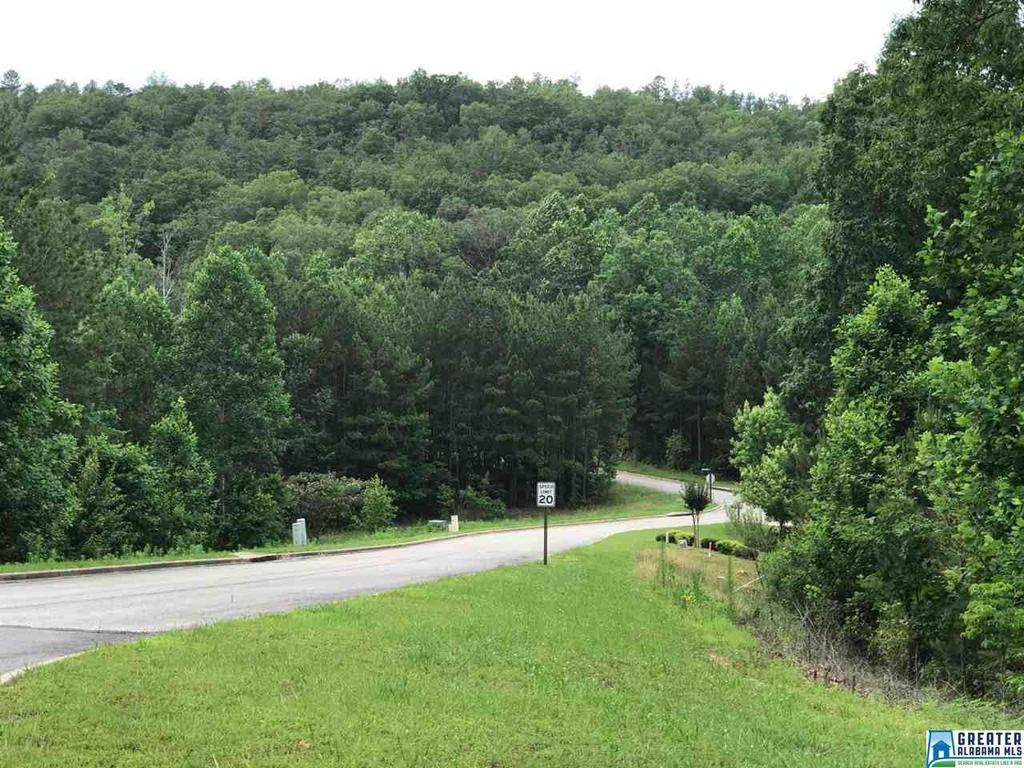 49 White Tail Run Unit 640 Chelsea, AL 35043 - MLS #: 793280